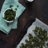 Opskrift: Grønkålschips