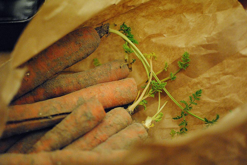 Urban farming | Frk. Kræsen