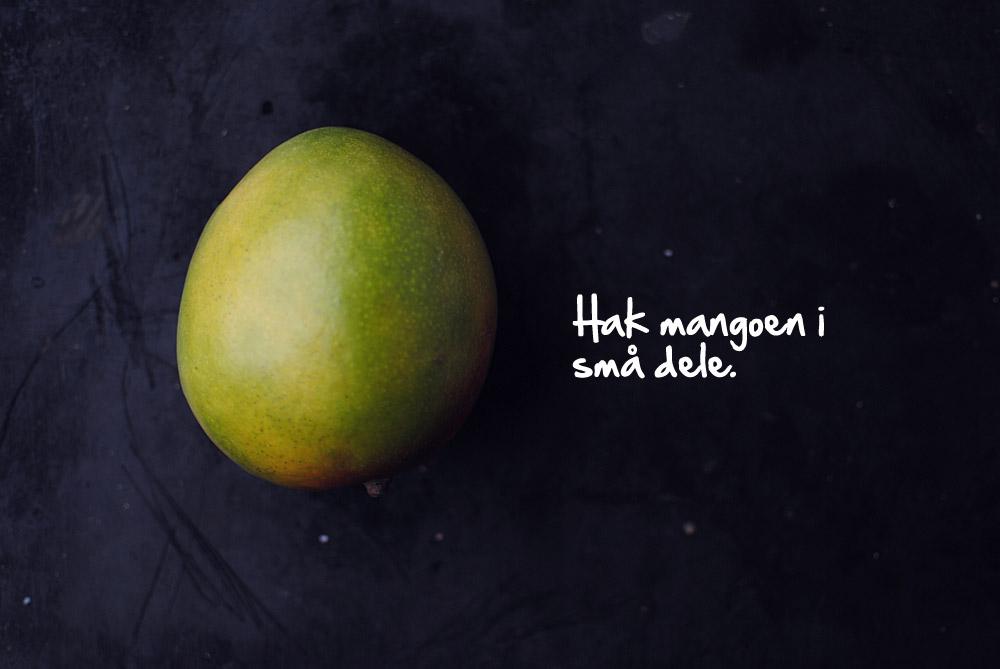 Opskrift: Mangosalsa | Frk. Kræsen