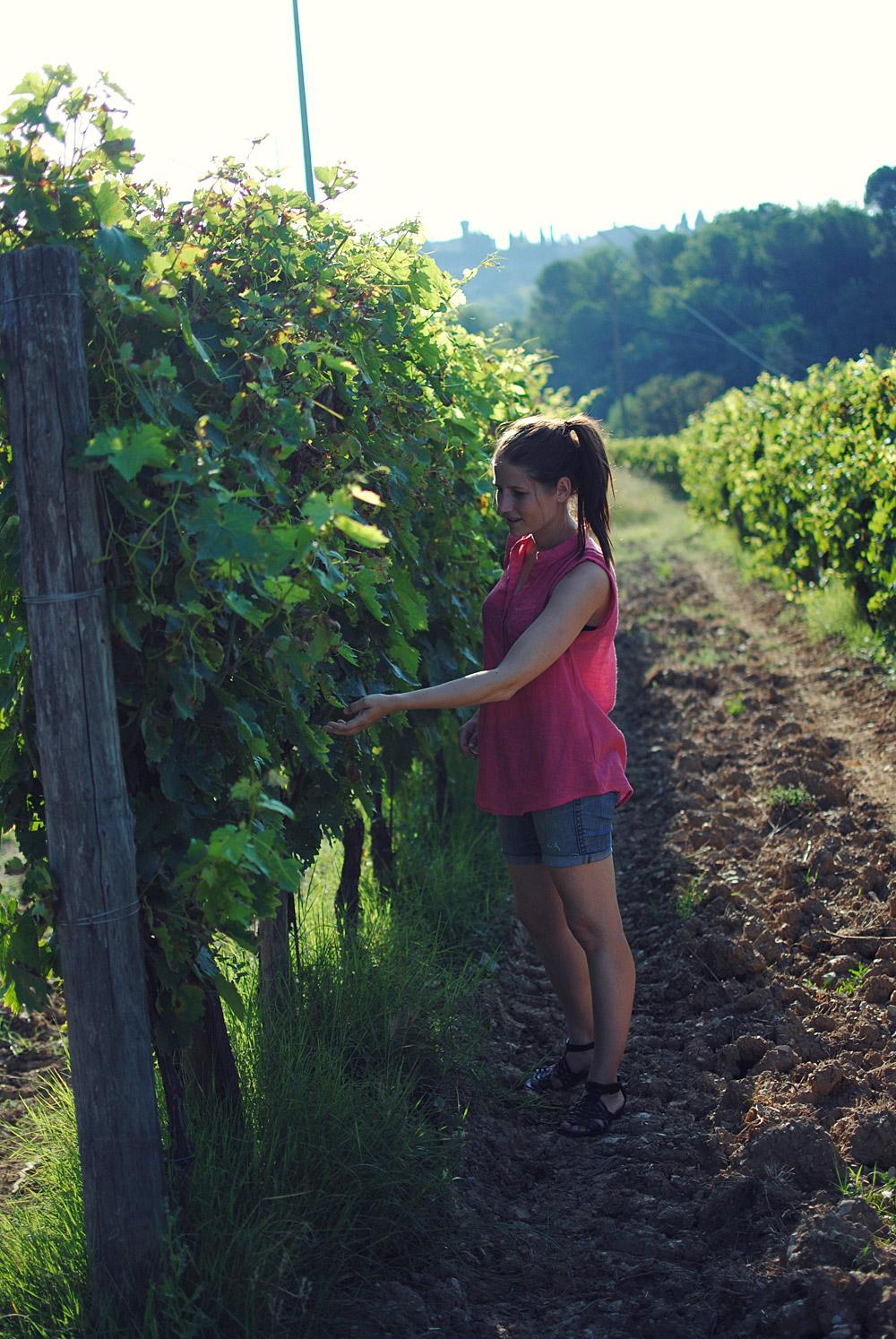 Guide til Toscana og Greve in Chianti | Frk. Kræsen