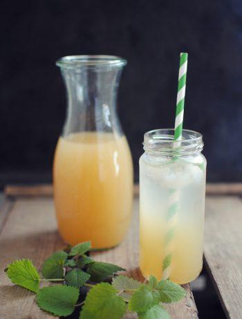 Opskrift: Ginger ale