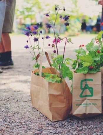 Plante-loppemarked i Sverige | Frk. Kræsen
