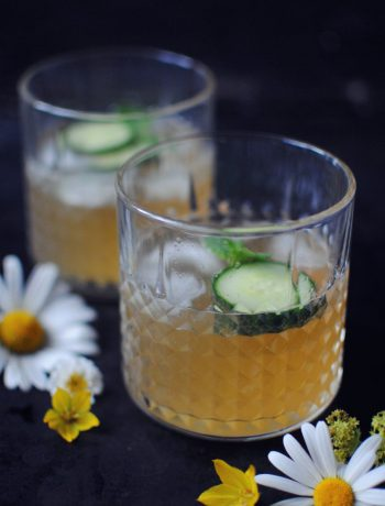 Opskrift: Sommerdrink med gin