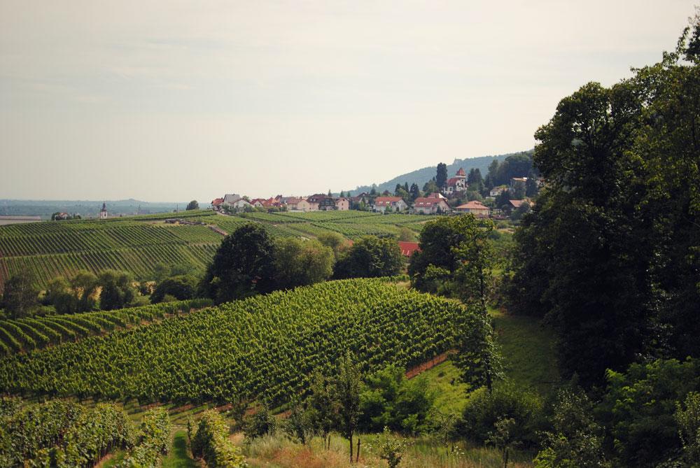 Frk. Kræsen på tur i Tyskland