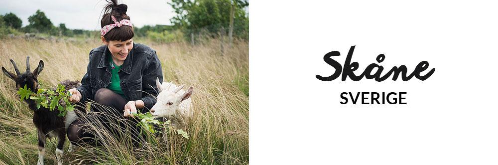 Guide til Skåne i Sverige | Frk. Kræsen