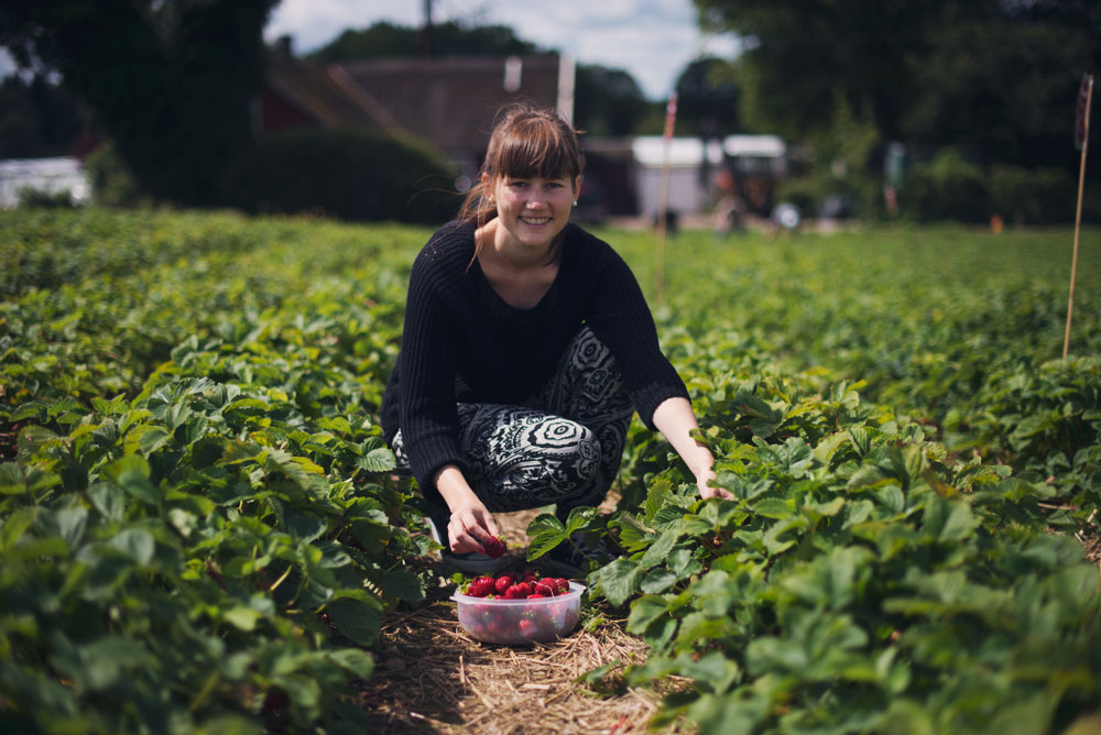 Opskrift: Jordbærgrød | Frk. Kræsen