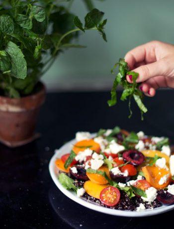 Opskrift: Sommersalat med stenfrugt | Frk. Kræsen