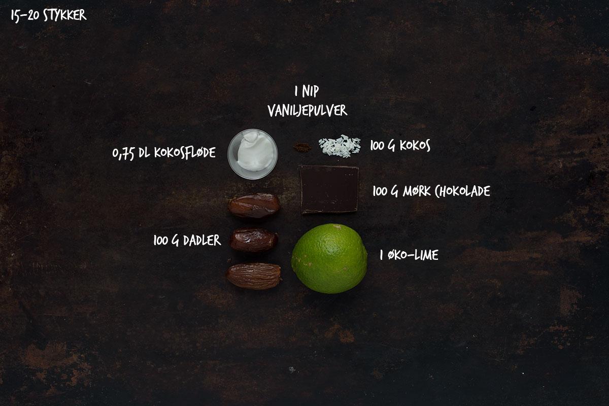 Opskrift: Mælkefrie bounty | Frk. Kræsen