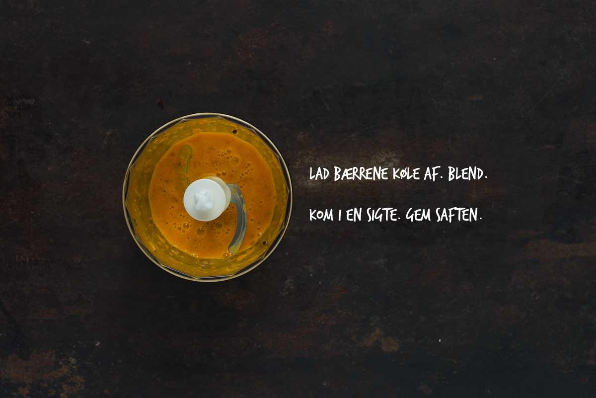Opskrift: Drink med havtorn og ginger | Frk. Kræsen