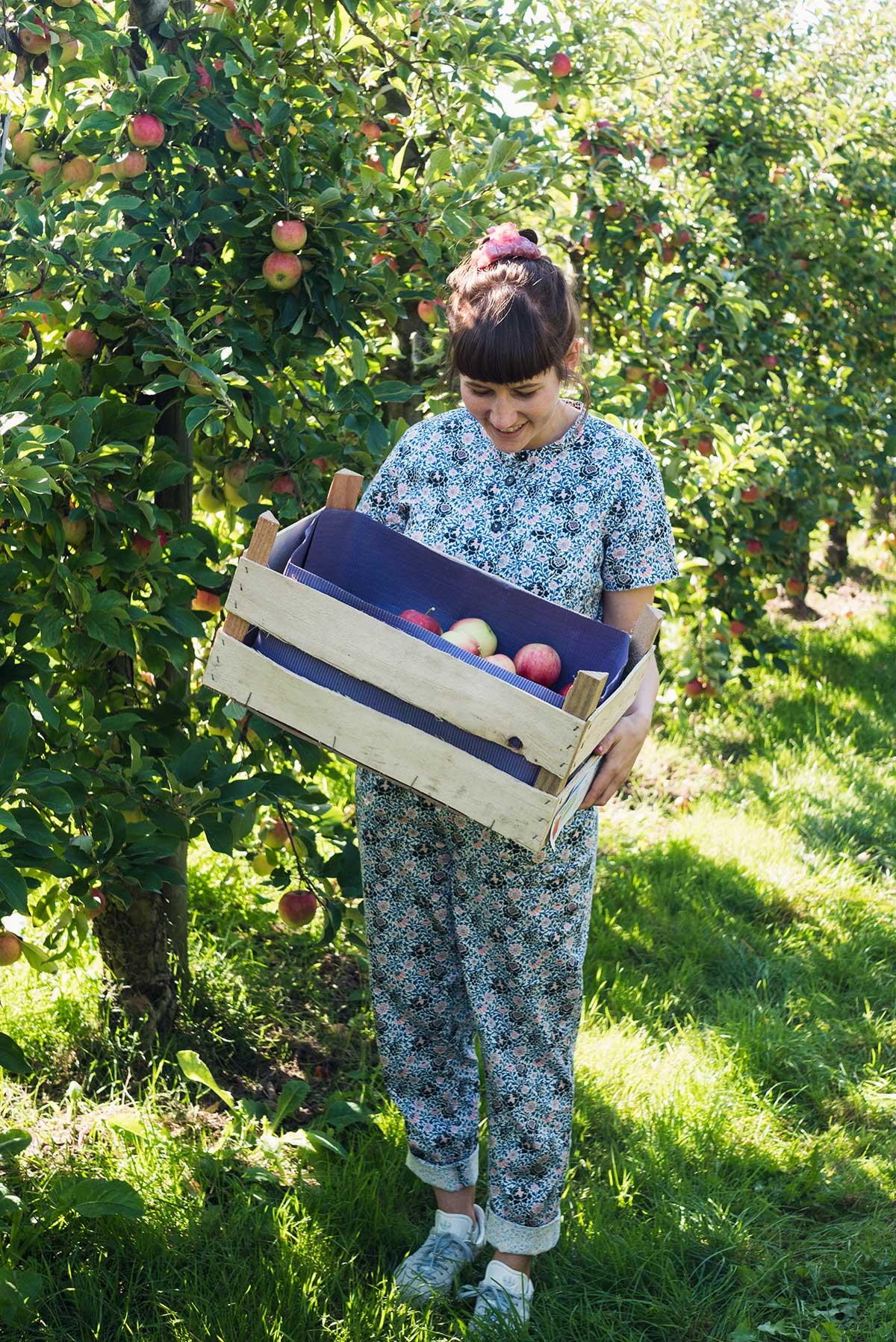 På en æbleplantage i Niedersachsen | Frk. Kræsen